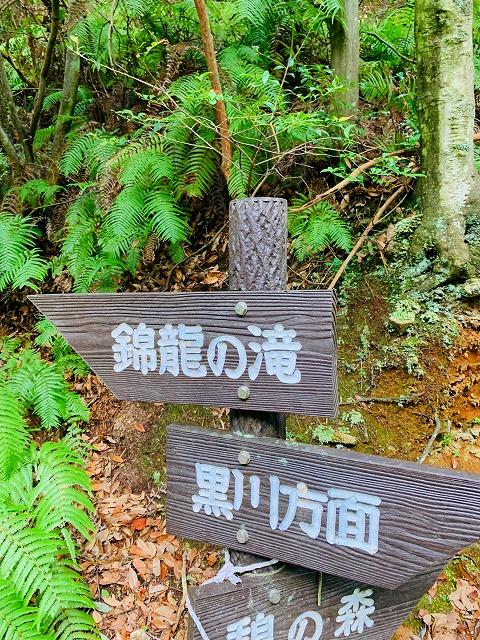 錦竜の滝-看板