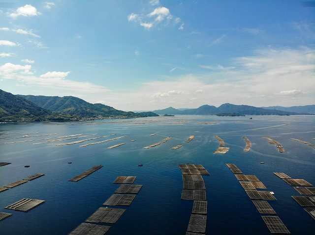 江田島牡蠣いかだ空撮3