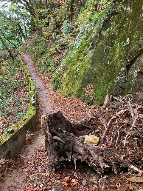 広島県三段峡